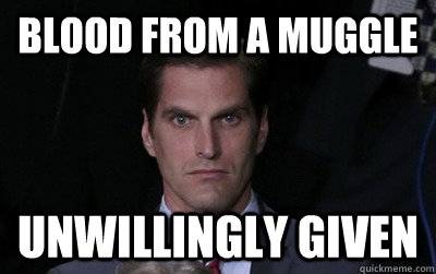 blood from a muggle unwillingly given - Menacing Josh Romney