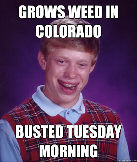 grows weed in colorado busted tuesday morning - Bad Luck Brian