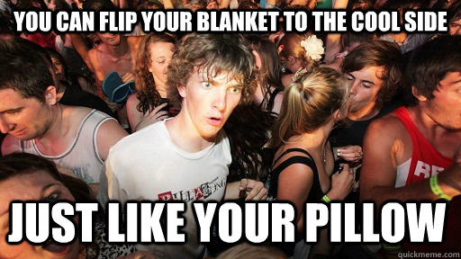 you can flip your blanket to the cool side just like your pi - Sudden Clarity Clarence