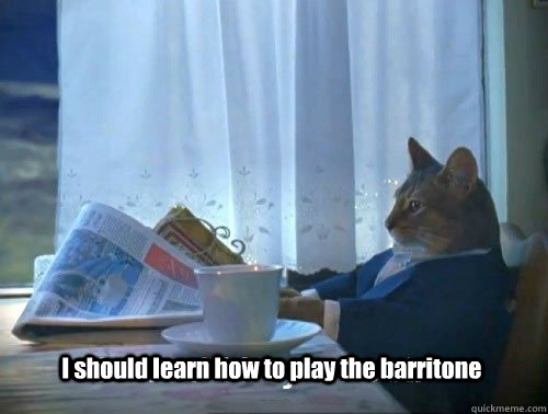 i should learn how to play the barritone - Fancy Cat