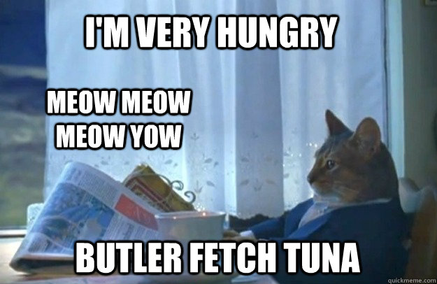 im very hungry meow meow meow yow butler fetch tuna - Sophisticated Cat