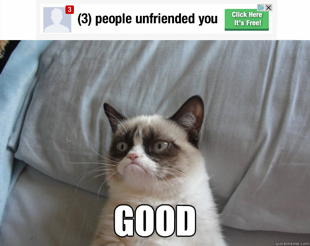 good - Grumpy Cat on Being Unfriended