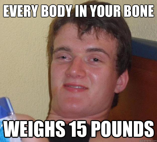every body in your bone weighs 15 pounds - 10 Guy