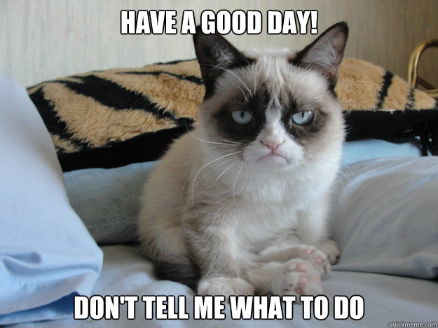 have a good day dont tell me what to do - Grumpy cat in the morning