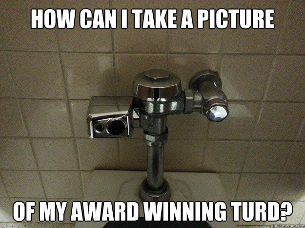 how can i take a picture of my award winning turd - Auto Flush