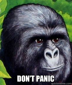 dont panic - gorilla munch