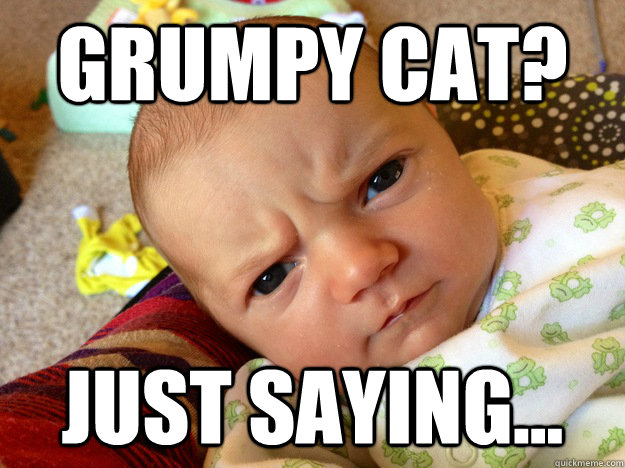 grumpy cat just saying - 