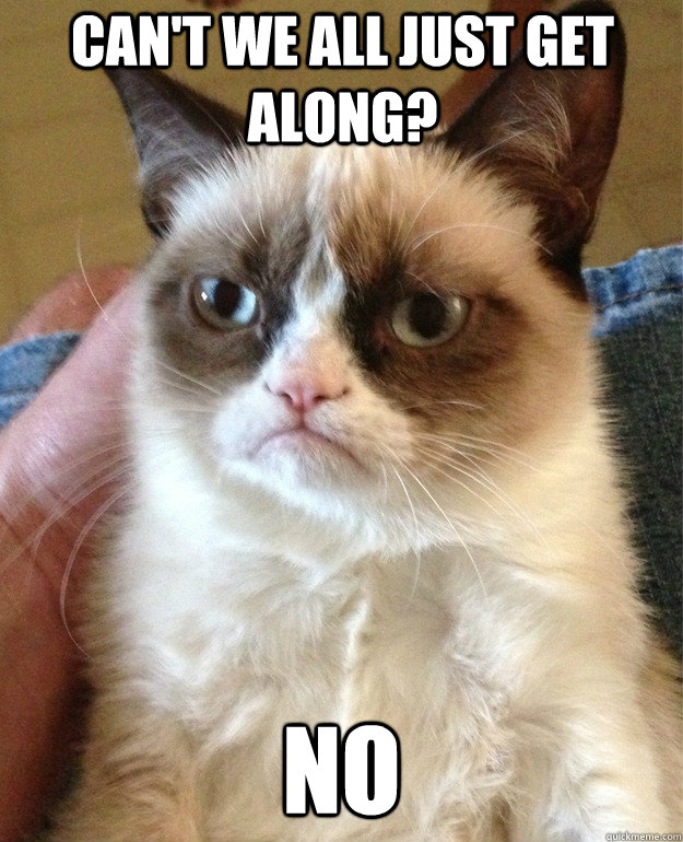 cant we all just get along no - Grumpy Cat