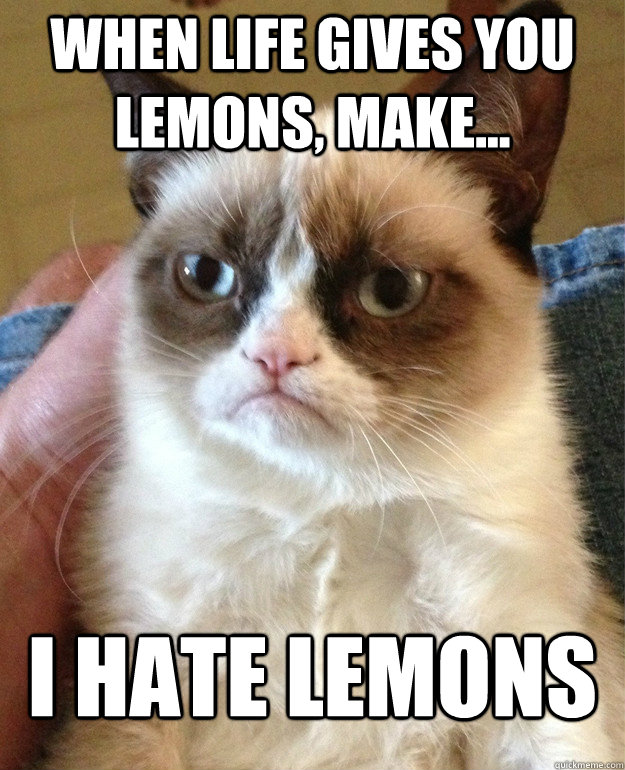 when life gives you lemons make i hate lemons - Tard cat shabbos
