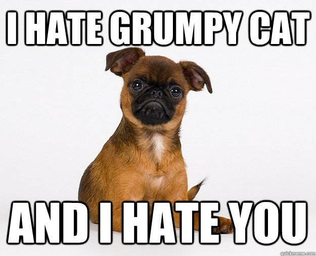 i hate grumpy cat and i hate you - grumpy dog