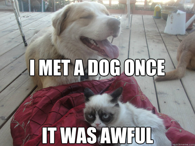 i met a dog once it was awful - 