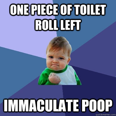 one piece of toilet roll left immaculate poop - Success Kid