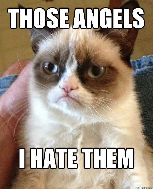 those angels i hate them - Grumpy Cat