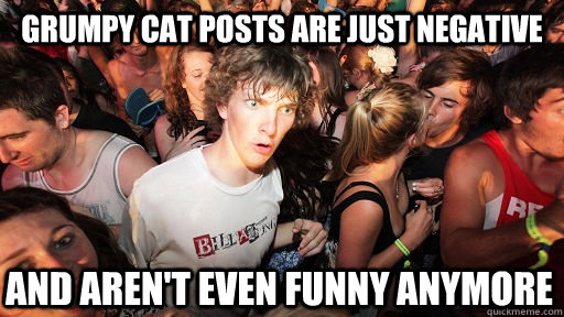 grumpy cat posts are just negative and arent even funny any - Sudden Clarity Clarence