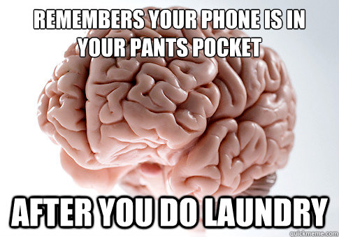 remembers your phone is in your pants pocket after you do la - Scumbag Brain