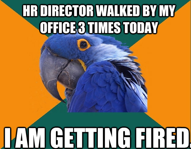 hr director walked by my office 3 times today i am getting f - Paranoid Parrot