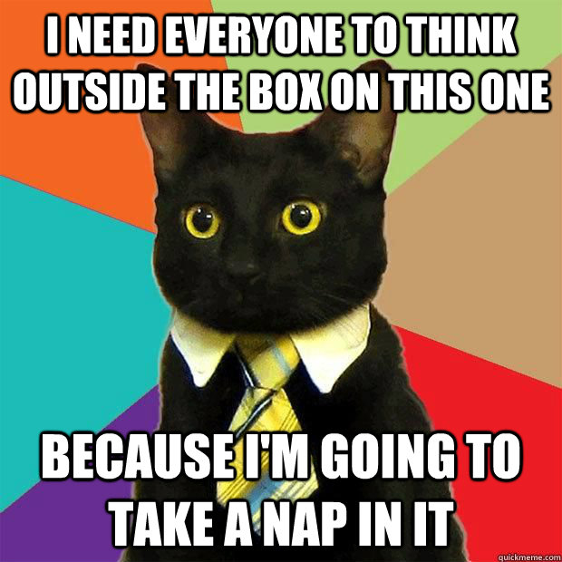i need everyone to think outside the box on this one because - business cat