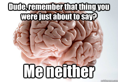 dude remember that thing you were just about to say me nei - Scumbag Brain