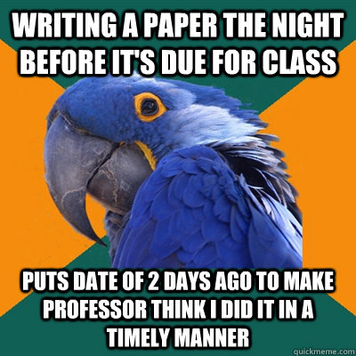 writing a paper the night before its due for class puts dat - Paranoid Parrot