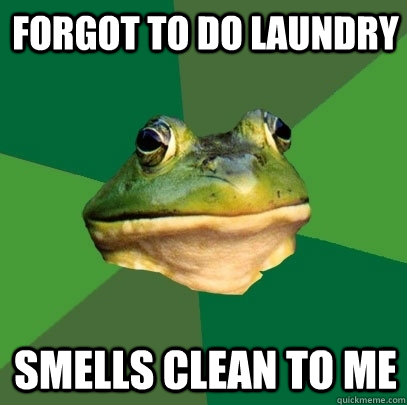 forgot to do laundry smells clean to me - Foul Bachelor Frog