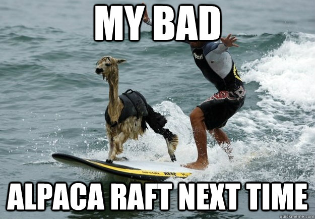 my bad alpaca raft next time -