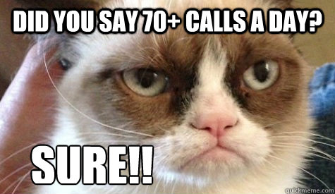 did you say 70 calls a day sure - Grumpy cat