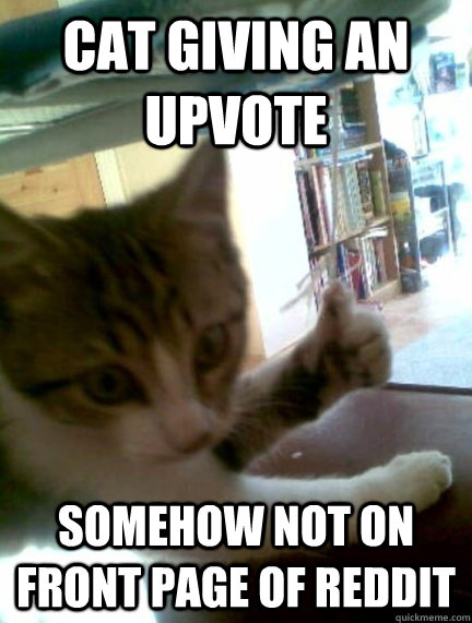 cat giving an upvote somehow not on front page of reddit -