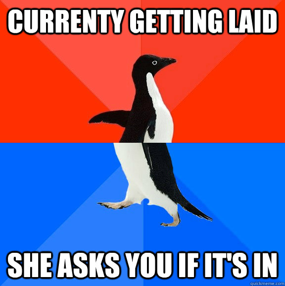 currenty getting laid she asks you if its in - Socially Awesome Awkward Penguin