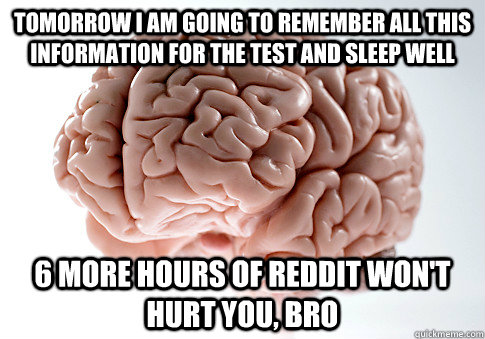 tomorrow i am going to remember all this information for the - Scumbag Brain