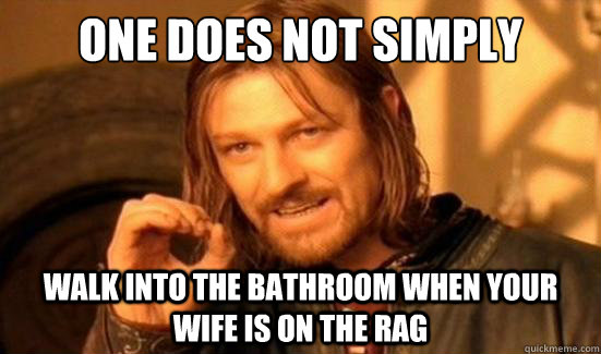 one does not simply walk into the bathroom when your wife is - Boromir