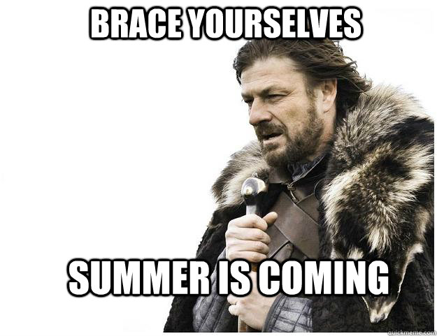 brace yourselves summer is coming - Imminent Ned