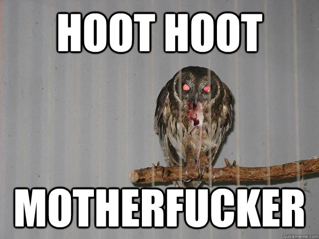 hoot hoot motherfucker - Bloodthirsty Owl