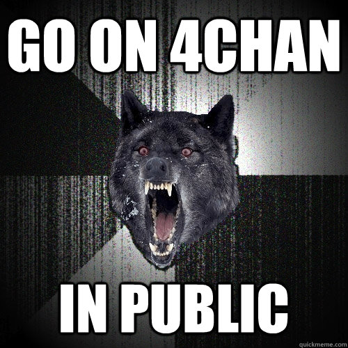 go on 4chan in public - Insanity Wolf