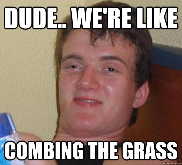 dude were like combing the grass - 10 Guy