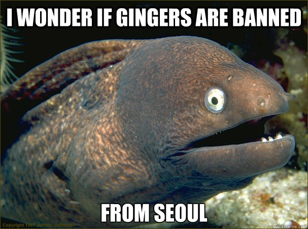 i wonder if gingers are banned from seoul - Bad Joke Eel