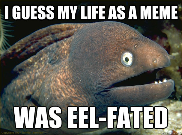 i guess my life as a meme was eelfated - Bad Joke Eel