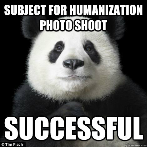 subject for humanization photo shoot successful - Success Panda