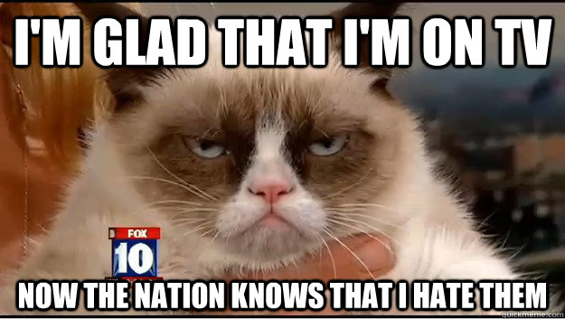 im glad that im on tv now the nation knows that i hate th - Grumpy Cat Is Serious