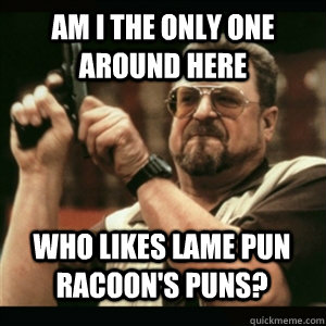 am i the only one around here who likes lame pun racoons pu - AM I THE ONLY ONE AROUND HERE
