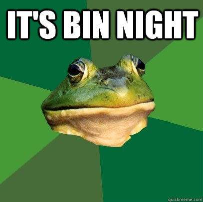 its bin night  - Foul Bachelor Frog