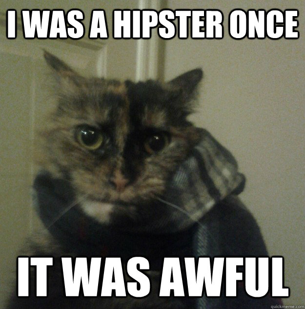 i was a hipster once it was awful - Hipster Cat