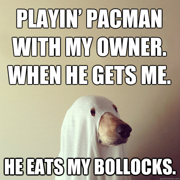 playin pacman with my owner when he gets me he eats my bo - Ghostdog