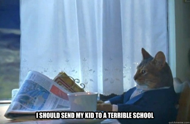 i should send my kid to a terrible school - Sophisticated Cat