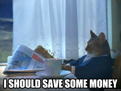 i should save some money - The One Percent Cat