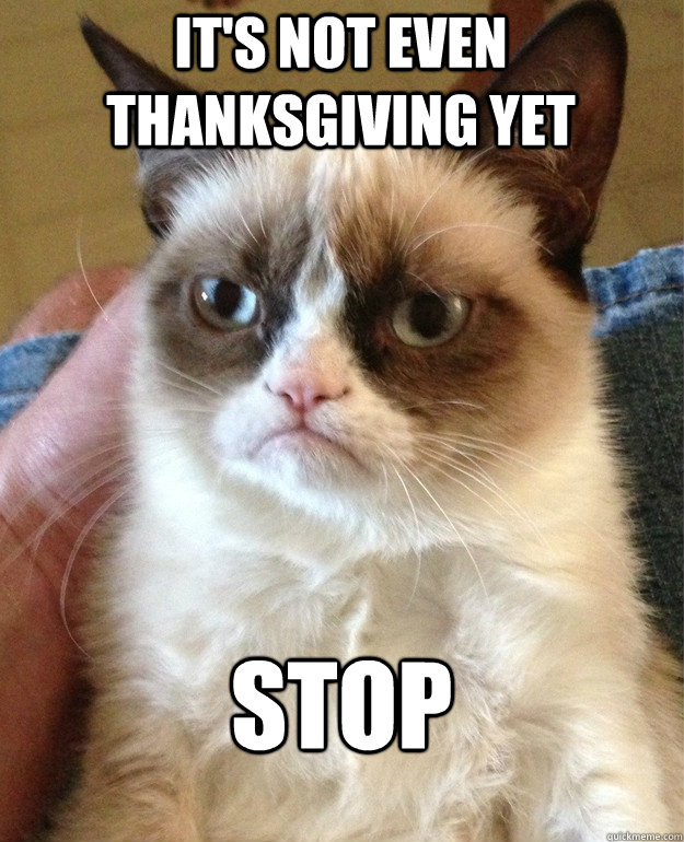 its not even thanksgiving yet stop - Grumpy Cat
