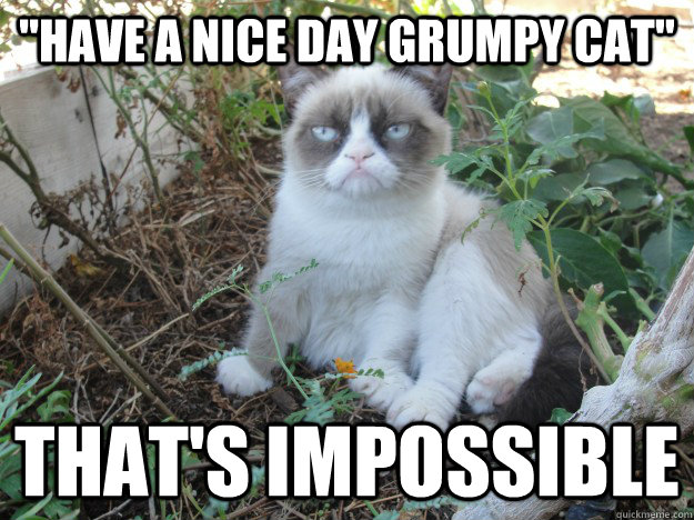 have a nice day grumpy cat thats impossible - grumpy cat