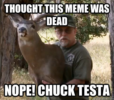 thought this meme was dead nope chuck testa - Chuck Testa