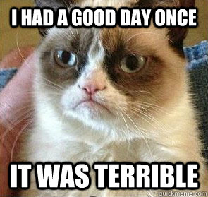 i had a good day once it was terrible - 
