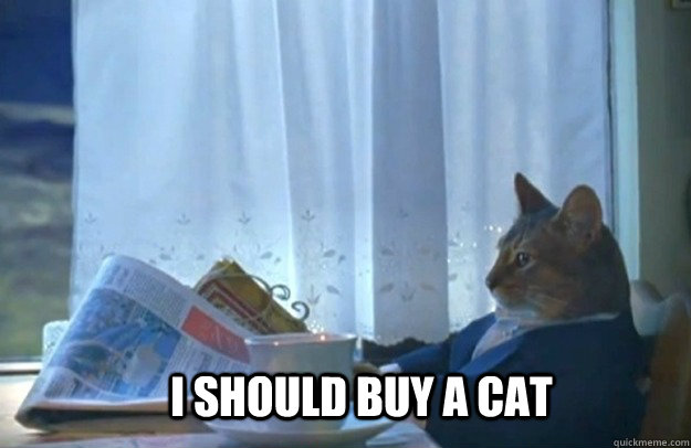 i should buy a cat - Sophisticated Cat