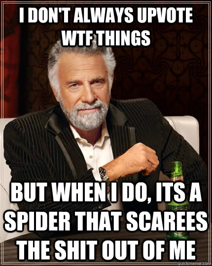 i dont always upvote wtf things but when i do its a spider - The Most Interesting Man In The World
